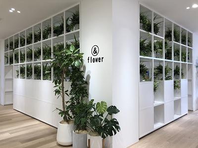 office & Garden